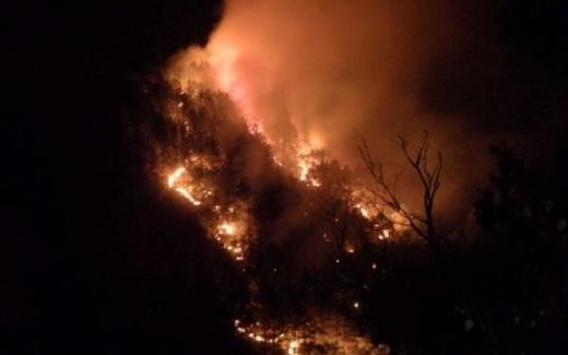 Извънредно: Пожар бушува в Креснеското дефиле, полиция и огнеборци са завардили Е-79!