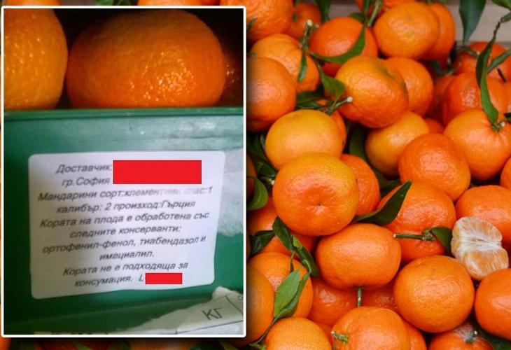 Владимир Василев: 15 години се занимавам с обработка на плодове и зеленчуци. Това, което виждам в един от най-големите складове в България, е, меко казано, ужасяващо! (СНИМКИ)