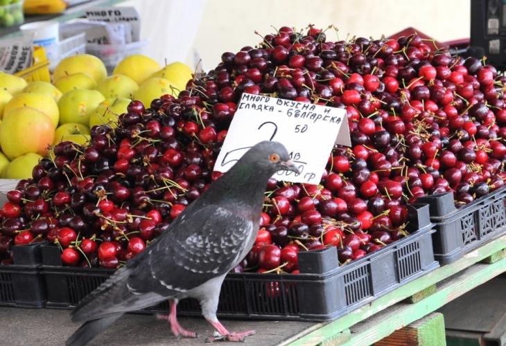 Тотална лудост: Столичани останаха потресени от видяното по пазарите!