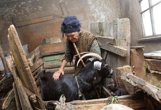 Изповед на една възрастна вдовица: Няма нощ, в която да не са влизали в двора ми и да не са откраднали или разрушили нещо